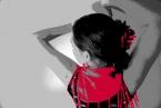 Flamenco-Red